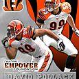 David Pollack/Cincinnati Bengals 8x10