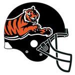 Bengals_Helmet_Concept1